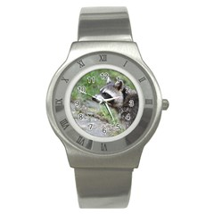 Racoon 1115 Stainless Steel Watches