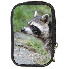 Racoon 1115 Compact Camera Cases