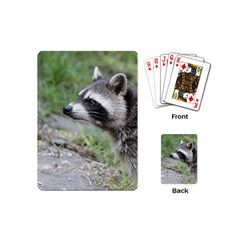 Racoon 1115 Playing Cards (Mini)