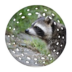 Racoon 1115 Round Filigree Ornament (2side)