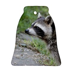 Racoon 1115 Bell Ornament (2 Sides)
