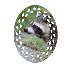Racoon 1115 Oval Filigree Ornament (2-Side)