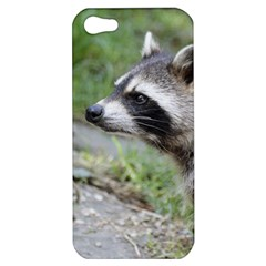 Racoon 1115 Apple iPhone 5 Hardshell Case