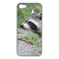Racoon 1115 Apple iPhone 5 Case (Silver)