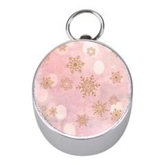 Winter Bokeh Pink Mini Silver Compasses