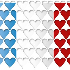 France Hearts Flag Magic Photo Cubes