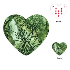 Jungle View At Iguazu National Park Playing Cards (heart)