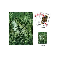 Jungle View at Iguazu National Park Playing Cards (Mini)
