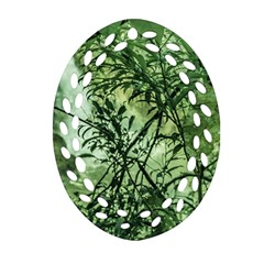 Jungle View At Iguazu National Park Oval Filigree Ornament (2 Side)