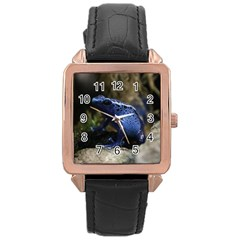 Blue Poison Arrow Frog Rose Gold Watches