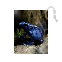 Blue Poison Arrow Frog Drawstring Pouches (large)
