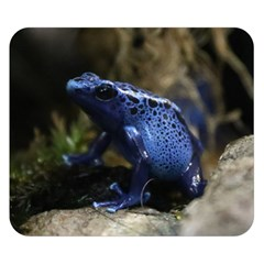Blue Poison Arrow Frog Double Sided Flano Blanket (Small)