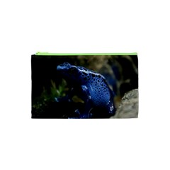 Blue Poison Arrow Frog Cosmetic Bag (xs)