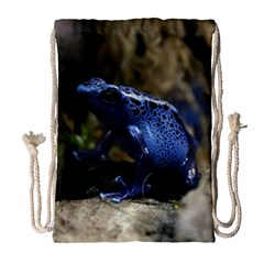Blue Poison Arrow Frog Drawstring Bag (large)