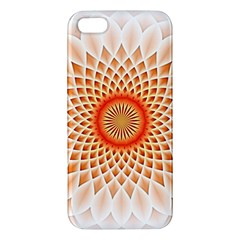 Swirling Dreams,peach Apple iPhone 5 Premium Hardshell Case