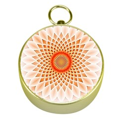 Swirling Dreams,peach Gold Compasses