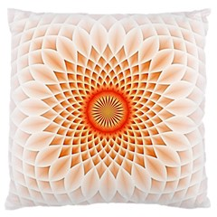 Swirling Dreams,peach Large Flano Cushion Cases (One Side)