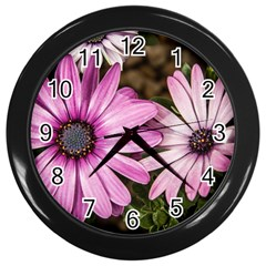 Beautiful Colourful African Daisies  Wall Clocks (Black)