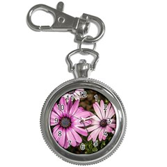 Beautiful Colourful African Daisies  Key Chain Watches