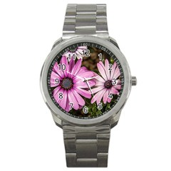 Beautiful Colourful African Daisies  Sport Metal Watches