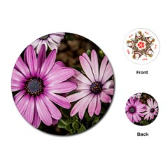 Beautiful Colourful African Daisies  Playing Cards (Round)