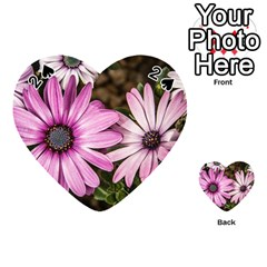 Beautiful Colourful African Daisies  Playing Cards 54 (heart)