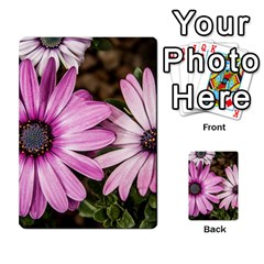 Beautiful Colourful African Daisies  Multi-purpose Cards (Rectangle)