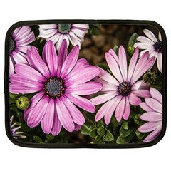 Beautiful Colourful African Daisies  Netbook Case (large)
