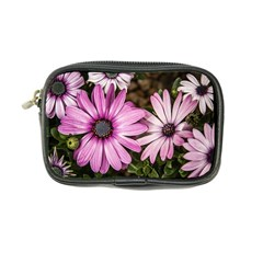 Beautiful Colourful African Daisies  Coin Purse