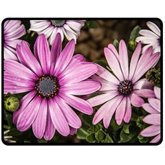 Beautiful Colourful African Daisies  Fleece Blanket (medium)