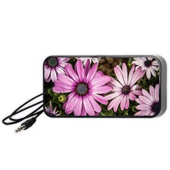 Beautiful Colourful African Daisies  Portable Speaker (black)