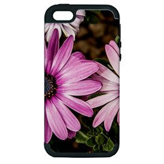 Beautiful Colourful African Daisies  Apple Iphone 5 Hardshell Case (pc+silicone)