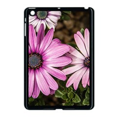 Beautiful Colourful African Daisies  Apple iPad Mini Case (Black)