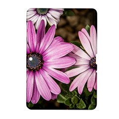 Beautiful Colourful African Daisies  Samsung Galaxy Tab 2 (10 1 ) P5100 Hardshell Case