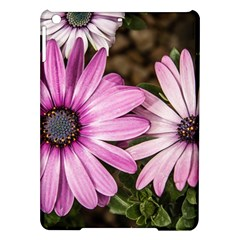 Beautiful Colourful African Daisies  iPad Air Hardshell Cases