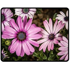 Beautiful Colourful African Daisies  Double Sided Fleece Blanket (Medium)
