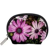 Beautiful Colourful African Daisies  Accessory Pouches (Small)