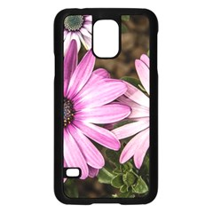 Beautiful Colourful African Daisies  Samsung Galaxy S5 Case (Black)