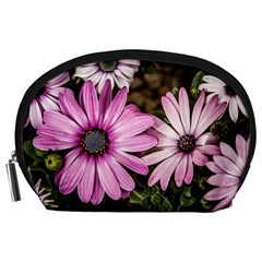 Beautiful Colourful African Daisies  Accessory Pouches (large)