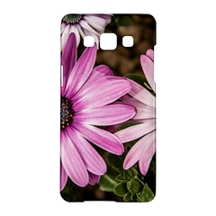 Beautiful Colourful African Daisies  Samsung Galaxy A5 Hardshell Case