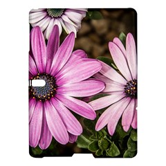 Beautiful Colourful African Daisies  Samsung Galaxy Tab S (10 5 ) Hardshell Case