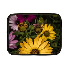 Beautiful Colourful African Daisies  Netbook Case (Small)