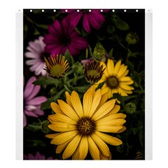 Beautiful Colourful African Daisies  Shower Curtain 66  X 72  (large)