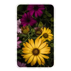 Beautiful Colourful African Daisies  Memory Card Reader