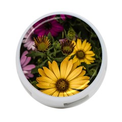 Beautiful Colourful African Daisies  4 Port Usb Hub (one Side)