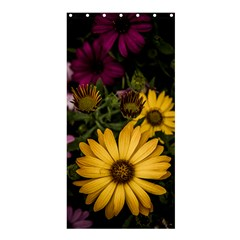 Beautiful Colourful African Daisies  Shower Curtain 36  X 72  (stall)