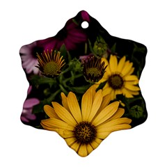 Beautiful Colourful African Daisies  Ornament (snowflake)