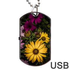 Beautiful Colourful African Daisies  Dog Tag Usb Flash (one Side)