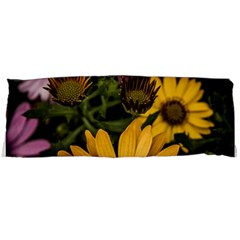 Beautiful Colourful African Daisies  Body Pillow Cases Dakimakura (Two Sides)