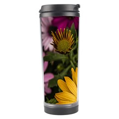 Beautiful Colourful African Daisies  Travel Tumblers